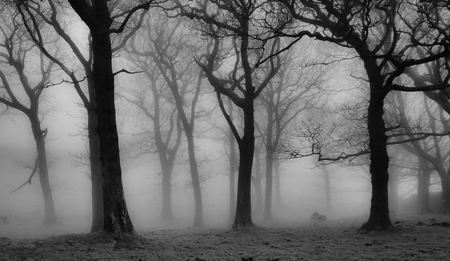 Scathwaite in the mist