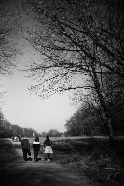 spring is here 4 @ walking path