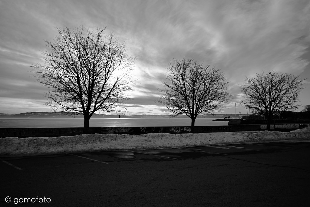march_3_2021