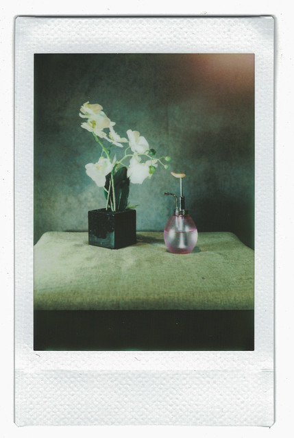 Instax mini - took by rolleicord