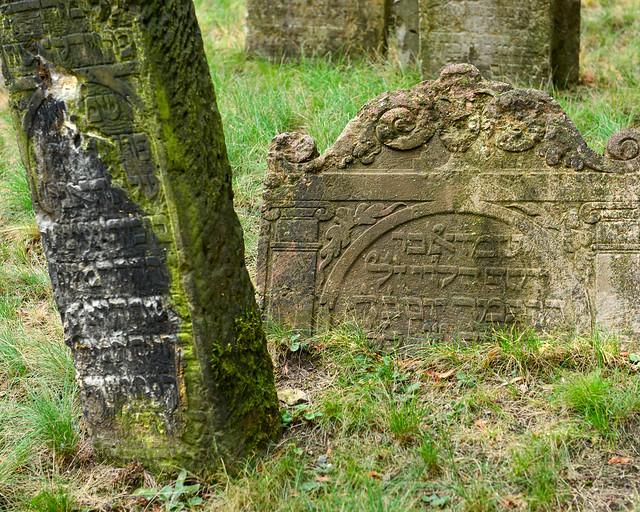 Lápidas metidas en la tierra del cementerio judío de Praga