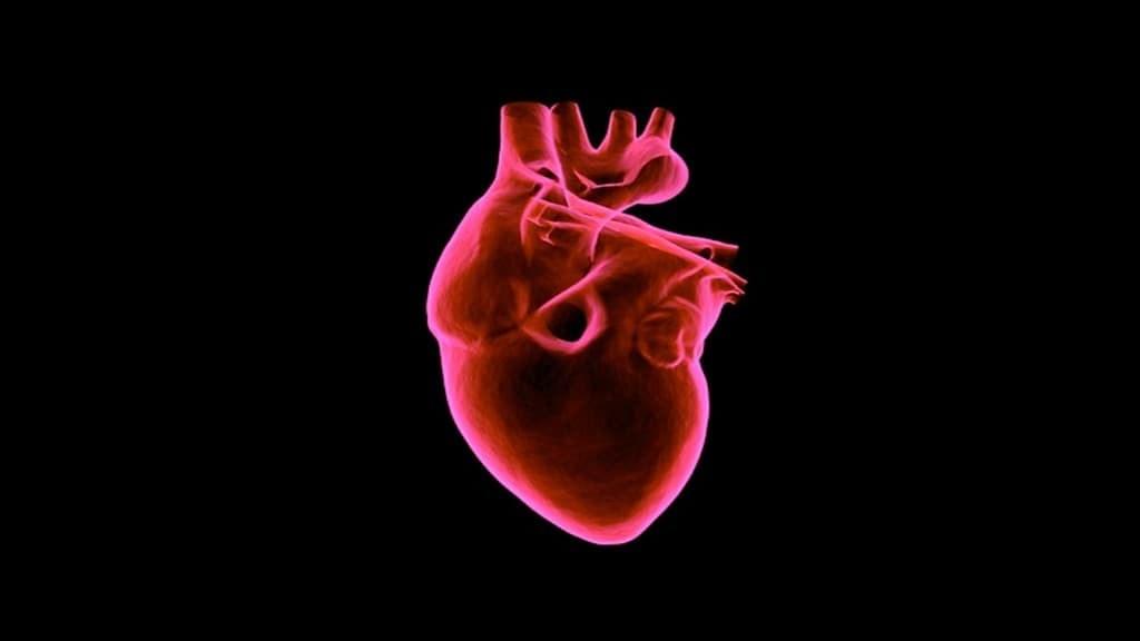 injection-péricardique-traite-les-lésions-cardiaques