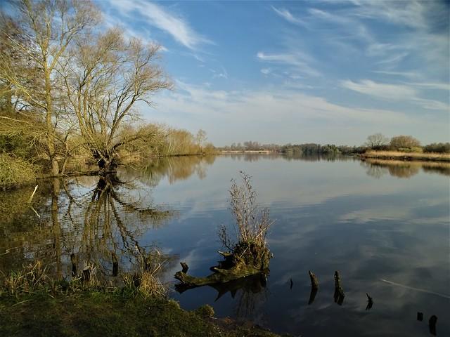 La réserve naturelle des étangs du romelaëre.Marais audomarois.