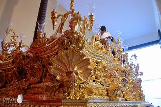 Dorado Trono 13