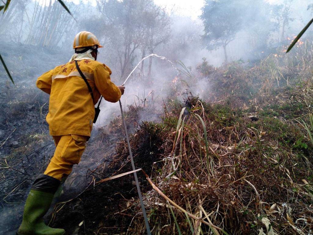 森林護管員等第一線人員需冒著極大風險執勤。照片提供:林務局