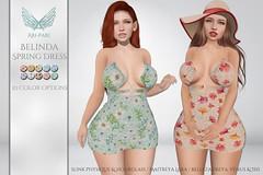 [Ari-Pari] Belinda Spring Dress