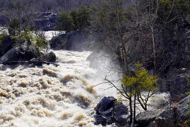 Side channel of the Great Falls of the Potomac, C&O Canal National Historic Park