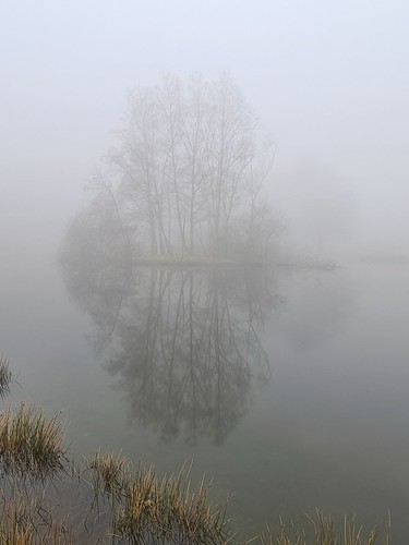 Reflections in the mist. (threejumps)