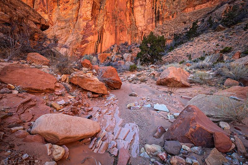 Canyon Scene