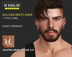 Sullivan Shape for Lelutka Head Skyler 2.5