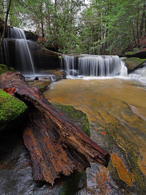 Secrets Of Fallingwater