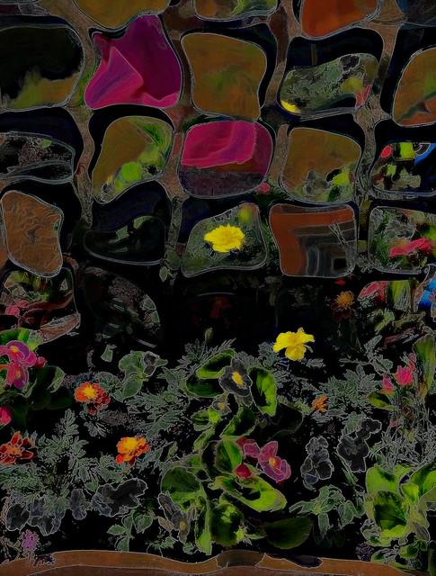 a glimpse into the garden