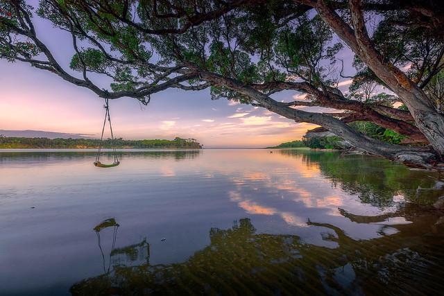 Swing above the Tahakopa River