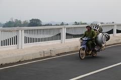 Laos 2016 #4543