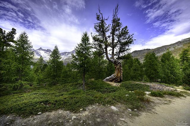 Hiking on 5 lake way - Zermatt - Wallis - Switzerland