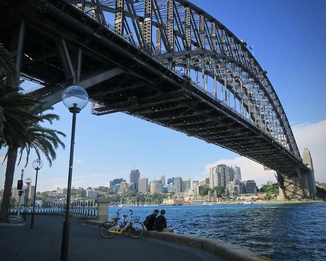 Under-the-bridge Buddies