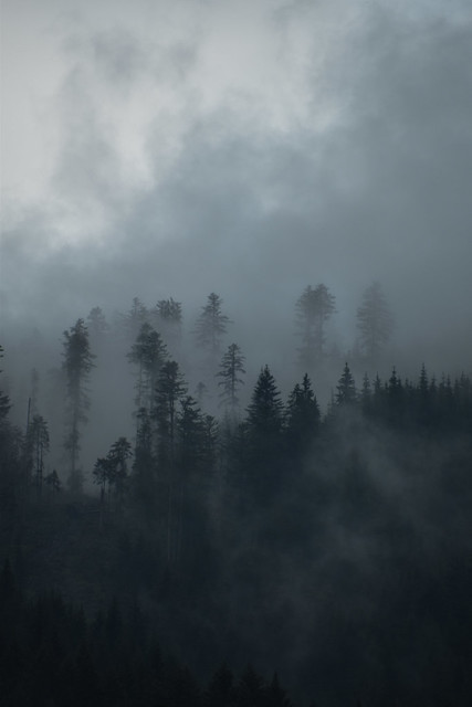 misty moody mountains