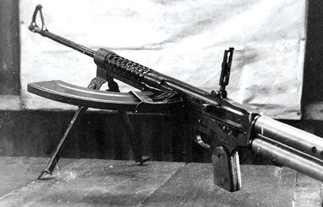 Dror-LMG-sdj-2