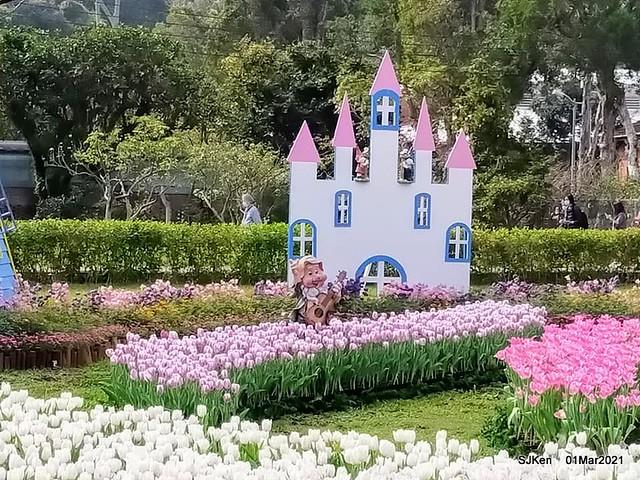 「2021士林官邸鬱金香展」(2021 Shilin Residence Tulip Show), Feb 25 ~ Mar 7, Taipei, Taiwan,SJKen, Mar 1,2021.