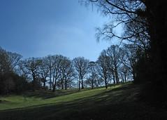A Walk across the Golf Course.