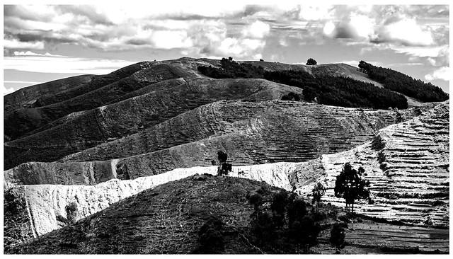 Furrowed land (zerfurchte Landschaft)