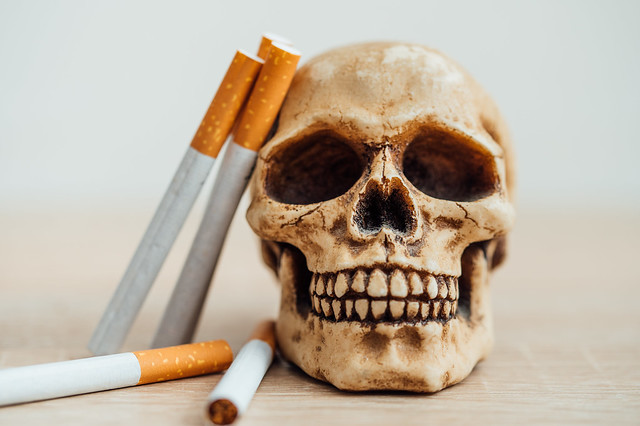 Cigarettes leaning on a human skull. Smoking kills