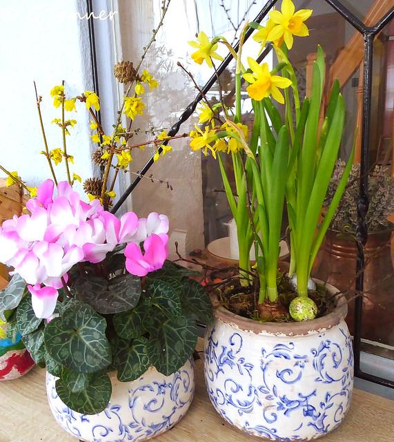 Frühling ins Haus holen