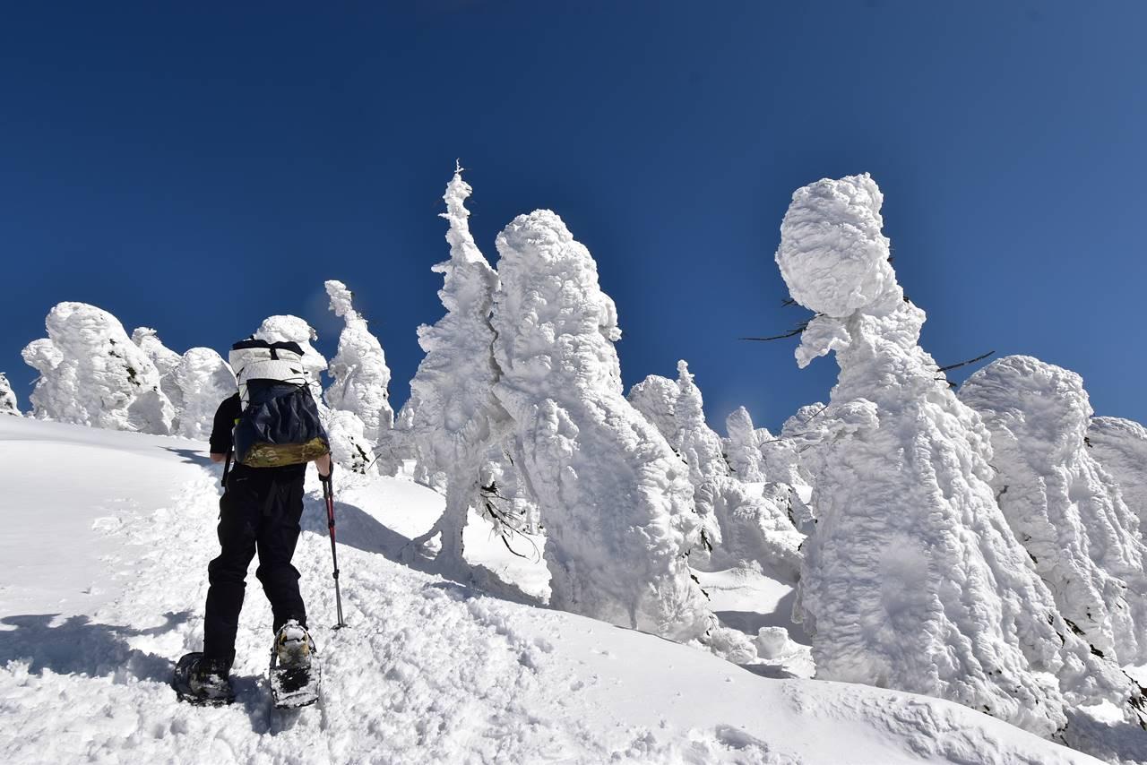 雪の西吾妻山 樹氷登山