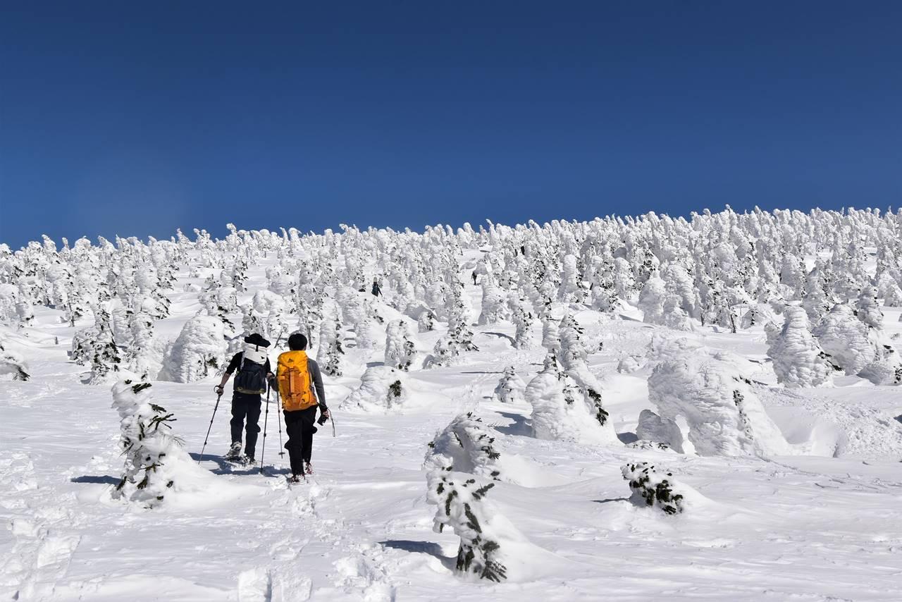樹氷の西吾妻山 スノーシューハイク
