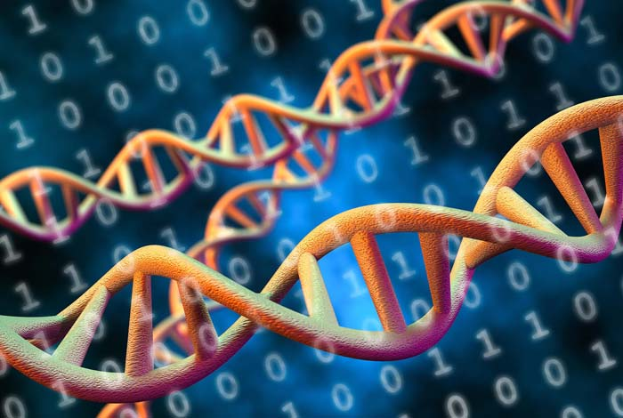 DNA offers a compact way to store huge amounts of data cost-effectively