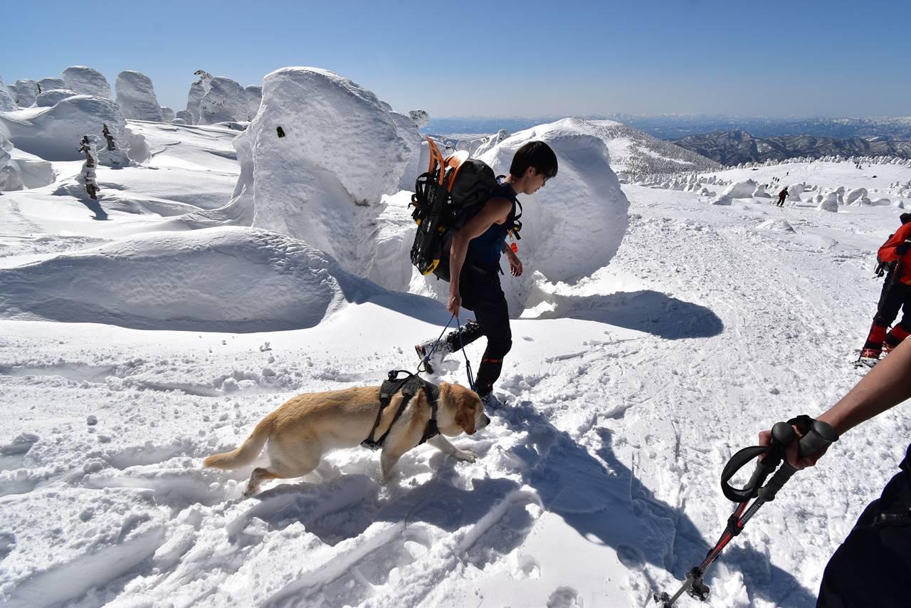 冬の西吾妻山にいたワンコ