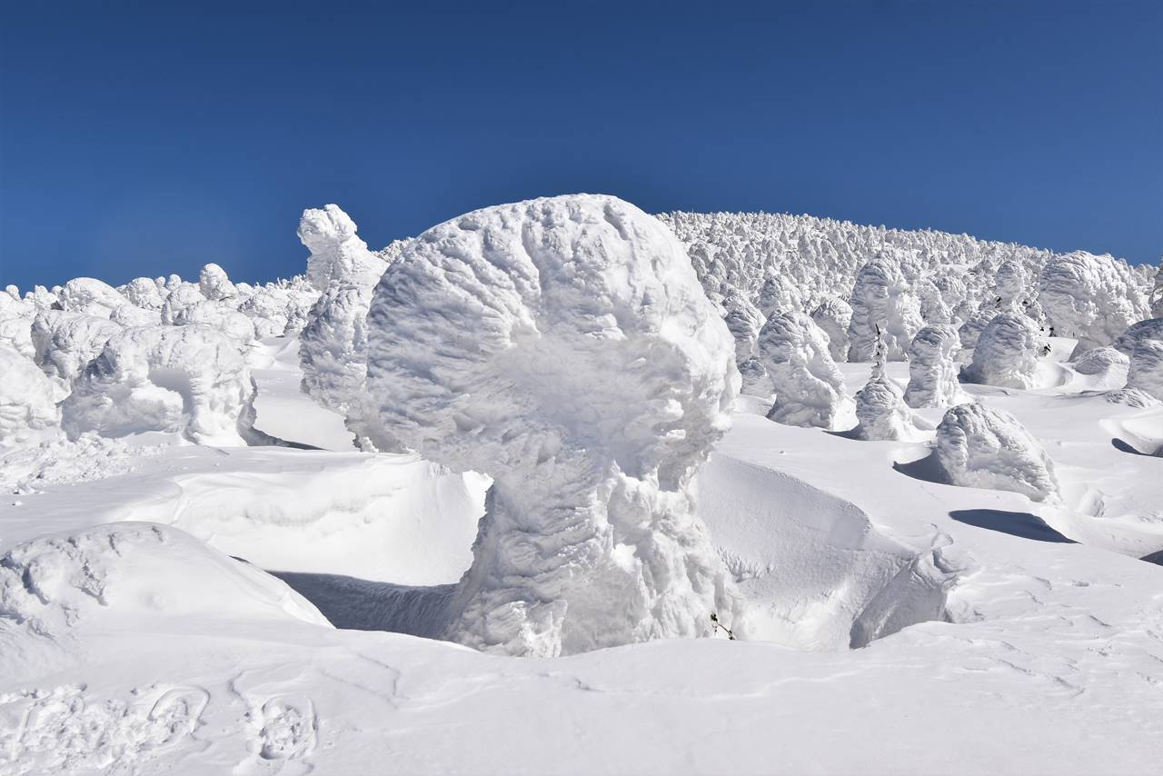 西吾妻山の樹氷・スノーモンスター