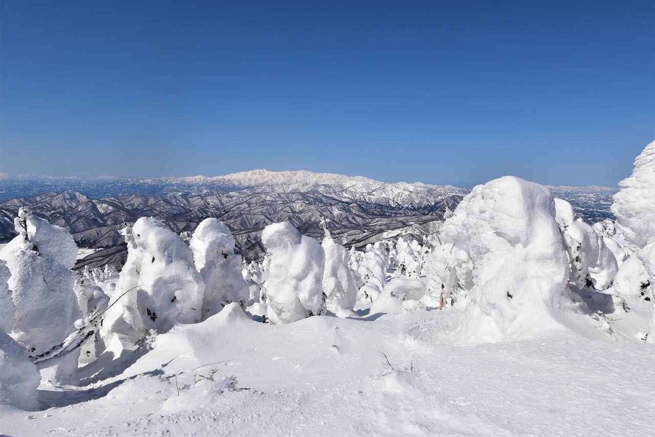 西大巓から眺める樹氷と飯豊山