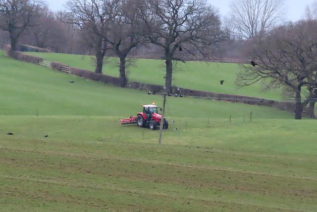 Houndings Lane Farmland