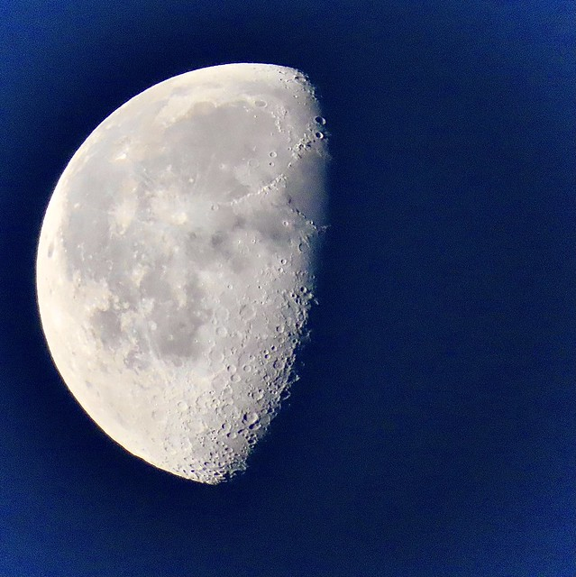 This Morning's Waning Gibbous Moon <> In Explore