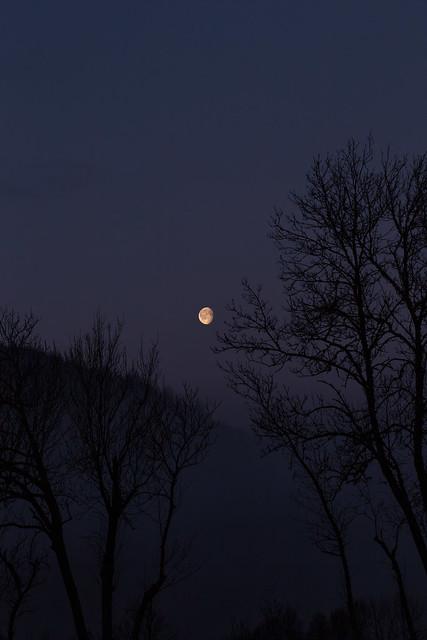 Early Morning Moon