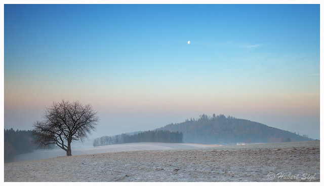 Morning moon - Am Tanzboden