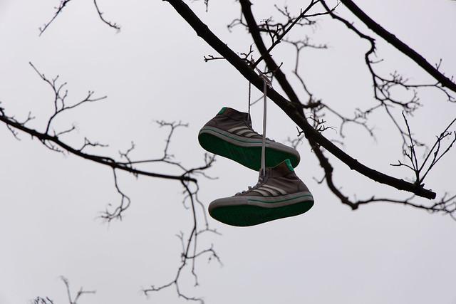 Schuhe, frisch gelüftet