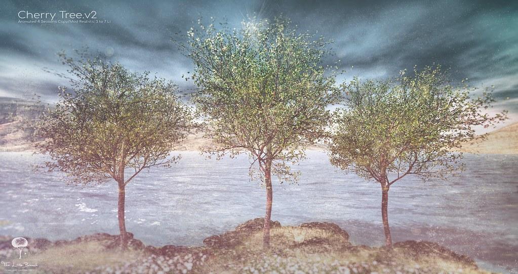 The Little Branch – Cherry Tree v.3 – ManlySL Event