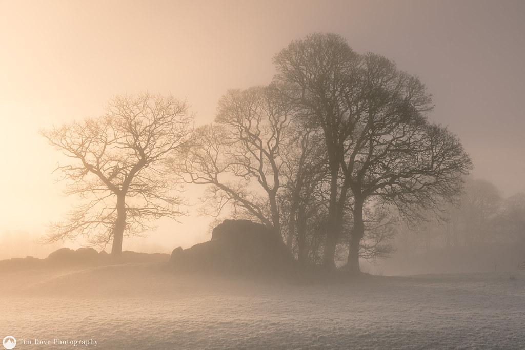 Coniston mists