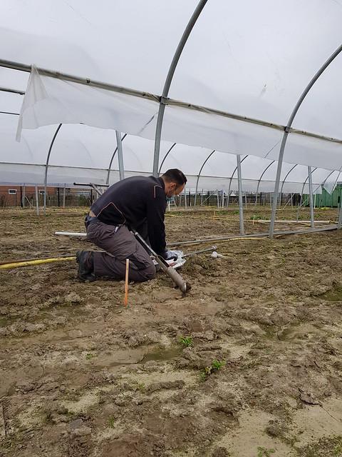undisturbed soil sampling 2