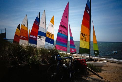 Sailboats (1)
