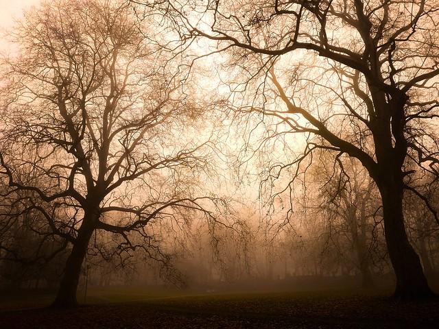 Darkness is my home ... Echo is my friend... p.