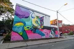 Frens & Sewp Toronto Graffiti & Street art