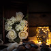 Fairy Light Roses