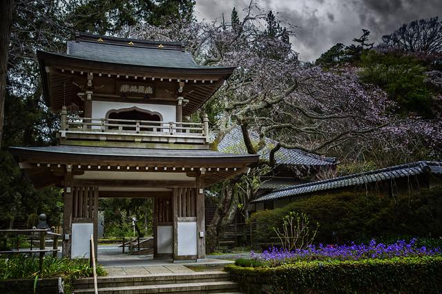 Jochi-ji Temple, Kamakura