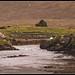"<p><a href=""https://www.flickr.com/people/118284488@N03/"">W Horton</a> posted a photo:</p>  <p><a href=""https://www.flickr.com/photos/118284488@N03/51004344607/"" title=""2-Ireland, County Mayo - Bundoragha River - low tide""><img src=""https://live.staticflickr.com/65535/51004344607_d9d2107a52_m.jpg"" width=""240"" height=""121"" alt=""2-Ireland, County Mayo - Bundoragha River - low tide"" /></a></p>  <p>Paint &amp; texture effects</p>"