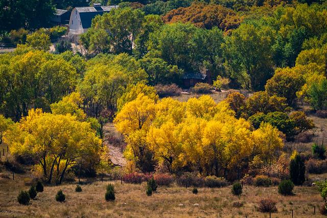 ColoradoSprings_461