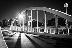 The bridge and lines