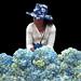 Indonesia - Bali - Flower Market - Hydrangea Lady - 1d